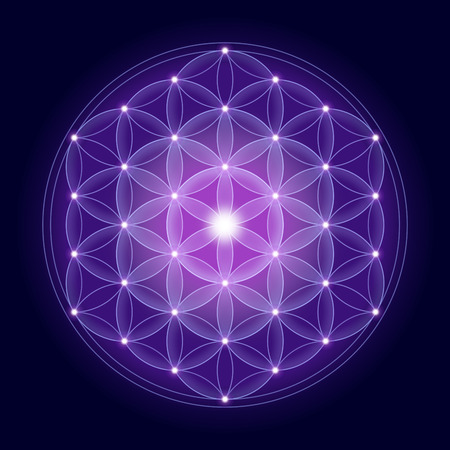 estrella de la vida: Flor brillante de la vida con estrellas sobre fondo azul oscuro, un símbolo espiritual y Geometría Sagrada desde la antigüedad. Foto de archivo