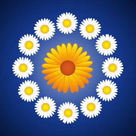 coronal: Floral wreath with daisies and a aster in the center like a sun. Vector illustration on blue gradient background.