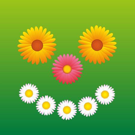 margriet: Bloemen - madeliefje, aster, Marguerite - dat een zonnige lachend gezicht vormen. Stock Illustratie