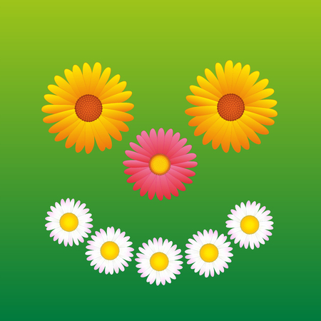 aster: Flowers - daisy, aster, Marguerite - that form a sunny smiling face.  Illustration