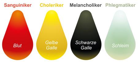 choleric: sanguine, choleric, melancholic, phlegmatic - The Four Temperaments  Illustration