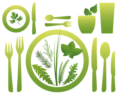 nettle: Cutlery for vegetarian and vegan meals with culinary herbs. Isolated vector illustration on white background.