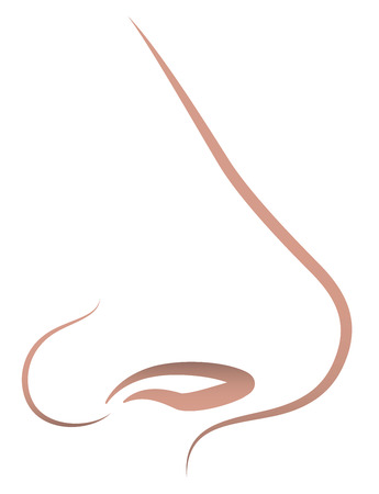 Outline icon illustration of a human nose. Isolated vector over white background.
