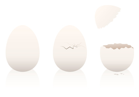 intact: Eggs - one is intact, the second is broken, the third is open. Three-dimensional isolated vector illustration on white background.