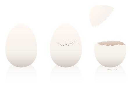 계란 - 하나, 두 번째가 파손, 손상되지 않은 세 번째는 열려 있습니다. 흰색 배경에 세 차원 격리 된 벡터 일러스트 레이 션입니다.