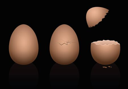 intact: Three brown chicken eggs - intact, broken and open. Three-dimensional isolated vector illustration on black background. Illustration