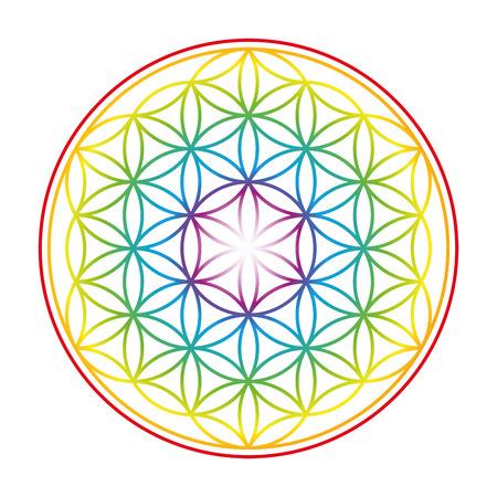 Flower of Life getoond als een zacht gloeiende regenboog gekleurde symbool van harmonie. Geïsoleerde illustratie op een witte achtergrond.