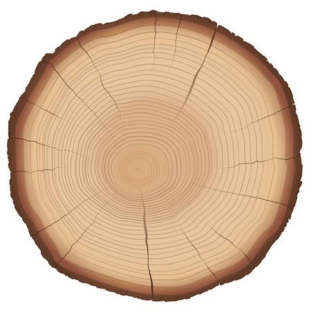 Illustratie van jaarringen op een houten plak. Geïsoleerde vector op witte achtergrond.