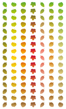 sere: Leaves changing colors in a year from green to autumn colors and to withered brown while falling off. Isolated vector illustration on white background.