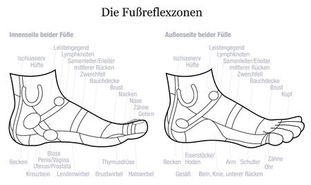podiatrist: Foot reflexology chart - inside and outside view of the feet - with description of corresponding internal organs and body parts in GERMAN LANGUAGE. Outline vector illustration on white background.
