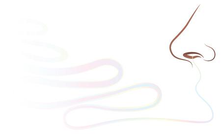 Nariz - oler una fragancia. Ilustración del esquema del vector aislado en el fondo blanco. Ilustración de vector