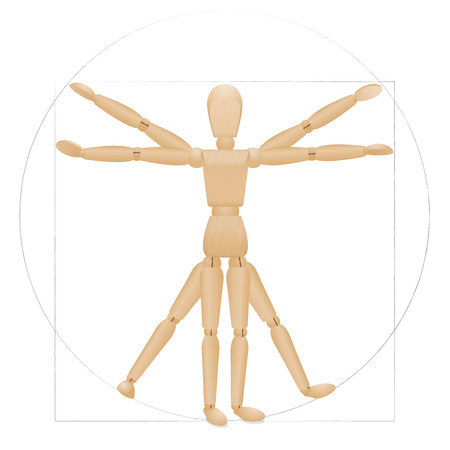 proportions of man: Vitruvian mannequin