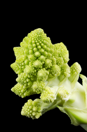fibonacci number: Romanesco broccoli floret macro photo on black background. Also known as Romanesque cauliflower or Buzzy Broc. Front view. Stock Photo