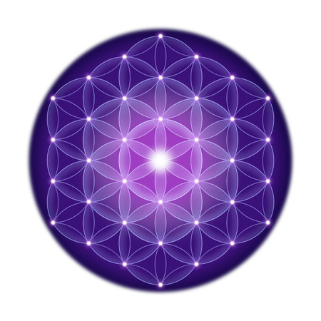 peace symbols: Bright Flower of Life with stars on white background, a spiritual symbol and Sacred Geometry since ancient times.