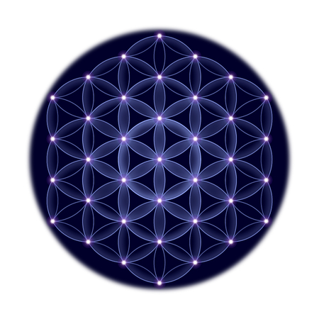Cosmic Flower of Life with stars on white background, a spiritual symbol and Sacred Geometry since ancient times. 스톡 콘텐츠