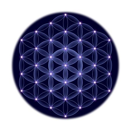 estrella de la vida: Flor de la Vida cósmica con estrellas sobre fondo blanco, un símbolo espiritual y geometría sagrada desde tiempos antiguos.