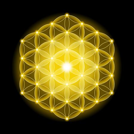 estrella de la vida: Flor de la Vida cósmica dorada con estrellas sobre fondo negro, un símbolo espiritual y geometría sagrada desde tiempos antiguos. Foto de archivo