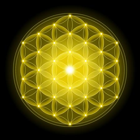 geometria: Flor de oro de la vida con el fondo negro, un símbolo espiritual y geometría sagrada desde tiempos antiguos.