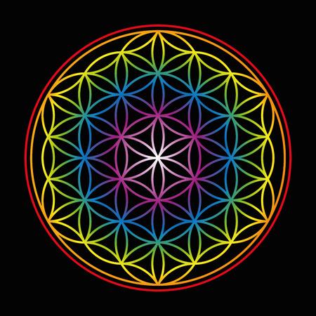 balance rainbow colors: Flower of Life - bright glowing rainbow colored symbol of harmony on black background.