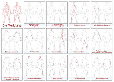 신체 경락 - 독일 표기 - 주요 침술 경락과 그 흐름 방향을 보여주는 개략도. 흰색 배경에 고립 된 그림입니다. 일러스트