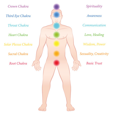 virile: Chakras with description. Isolated illustration on white background.
