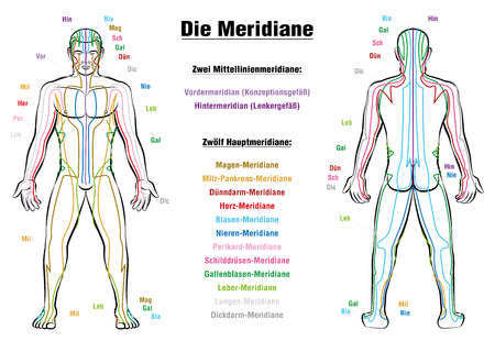 Meridian System Chart - GERMAN LABELING!- Male body with acupuncture meridians, anterior and posterior view.
