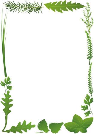허브 세로 프레임. 흰색 배경에 고립 된 그림.