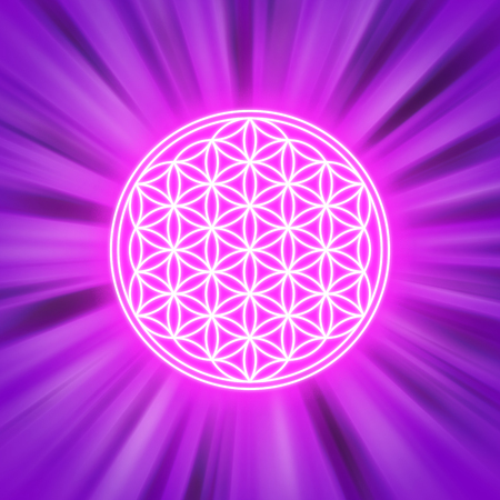 radiant: Bright Flower of Life on pink light rays. Spiritual symbol and Sacred Geometry since ancient times. Illustration. Stock Photo
