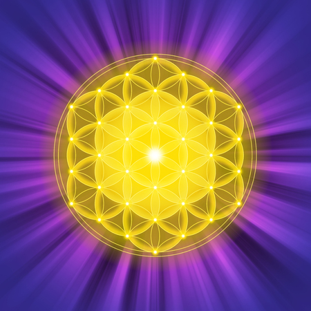 Bright golden Flower of Life on purple light rays. Spiritual symbol and Sacred Geometry since ancient times. Illustration.