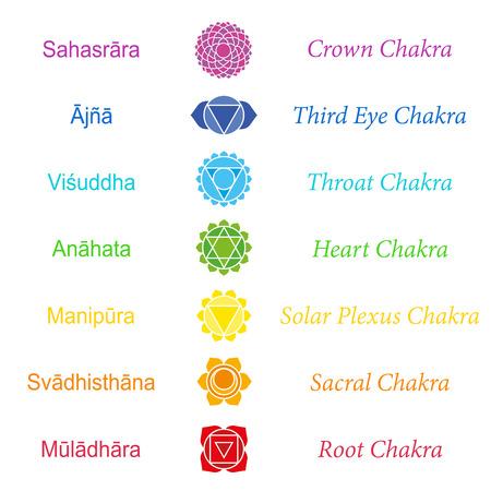 solar plexus: Sanskrit names of the seven main chakras.