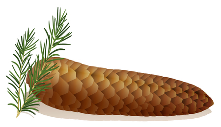 bowel movement: Hard stool - symbolically depicted with an horizontal lying spruce cone.