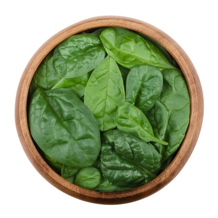 edible plant: Fresh green spinach leaves in a wooden bowl on white background. Spinacia oleracea, edible flowering plant in the family Amaranthaceae. Raw vegetable. Isolated macro food photo, close up from above.
