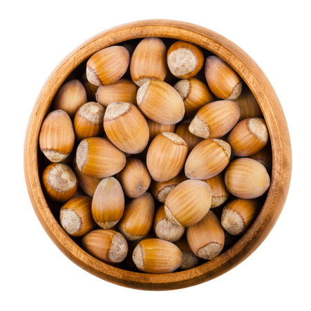 cobnut: Unshelled common hazelnuts in a wooden bowl on white background. Ripe seeds of Corylus avellana, species native in Europe. Edible raw fruits with shells. Isolated macro food photo close up from above.