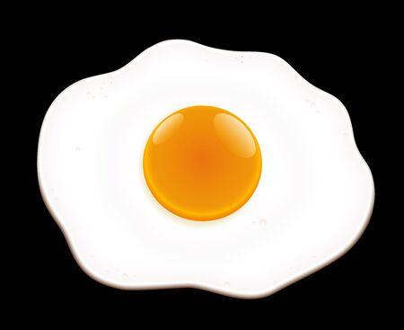 fried egg: Fried egg on black background- isolated vector illustration.