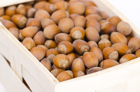 corylus: Common hazelnuts in a wicker basket on white background. Unshelled ripe seeds of Corylus avellana, native in Europe. Edible raw nuts with shells. Isolated macro food photo close up from above.
