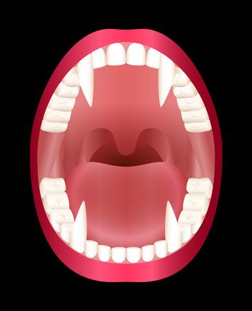 Fangs - vamps open mouth - vector illustration on black background. Illustration