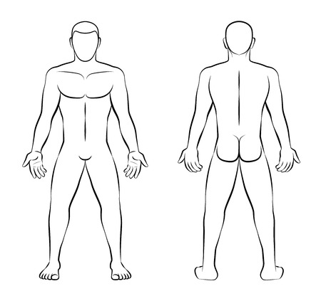 nude man: Nude man - outline illustration - front view and back view.