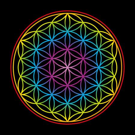 inner peace: Flower of Life, symbol of harmony - rainbow gradient colored illustration on black background. Illustration