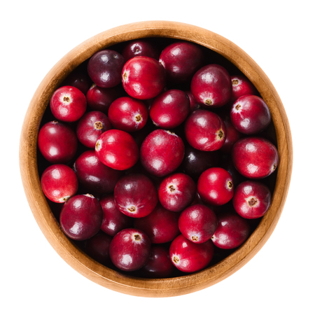 vaccinium macrocarpon: Fresh cranberries in a wooden bowl on white background. Ripe berries of Vaccinium macrocarpon, also large cranberry, American cranberry or bearberry. Isolated macro food photo close up from above. Stock Photo