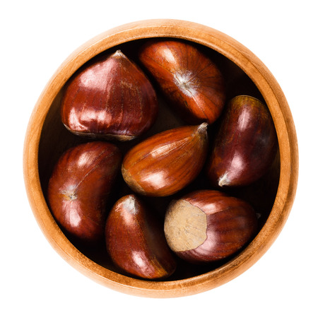 castanea sativa: Sweet chestnuts in wooden bowl on white background. Edible seeds or nuts of Castanea sativa, also called marron and Spanish or Portuguese chestnut. Ripe brown fruits. Isolated macro food photo.