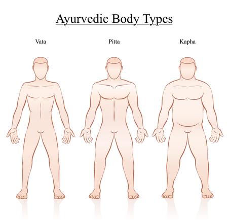 アーユルヴェーダ体憲法型 - ヴァータ、ピッタ、カパ。概要別の解剖に 3 人の男性のイラストです。