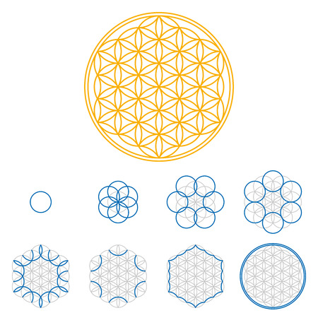 Colored Flower of Life development. An ancient symmetrical symbol, composed of multiple overlapping circles, starting by one single circle, forming a flower like pattern. Sacred geometry illustration. Çizim