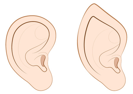 Human ear and pointed ear of an elf, fairy, vampire or other fantasy creature.