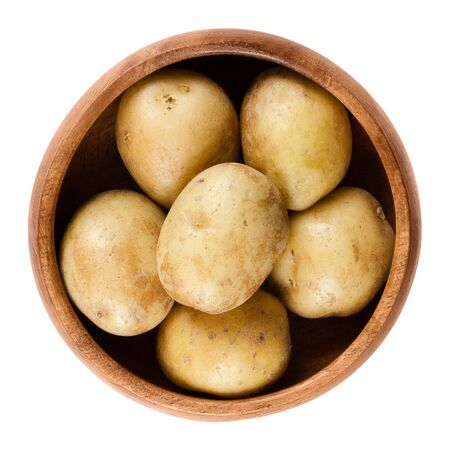 nightshade: Raw mini potatoes in wooden bowl. Edible tuber of nightshade Solanum tuberosum, a starchy crop. Isolated macro food photo close up from above on white background.