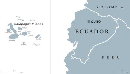 republic of ecuador: Ecuador political map with capital Quito and the Galapagos Islands in the Pacific Ocean. Republic in South America. Gray illustration with English labeling on white background. Vector.