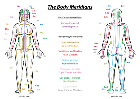 MERIDIAN SYSTEM CHART - Weiblicher Körper mit Haupt- und Mittel Akupunktur-Meridian - vordere und hintere Ansicht - Traditionelle Chinesische Medizin.