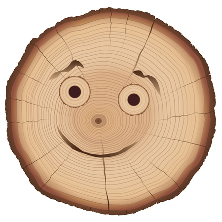 Tree slice with smiling comic face and many annual rings.
