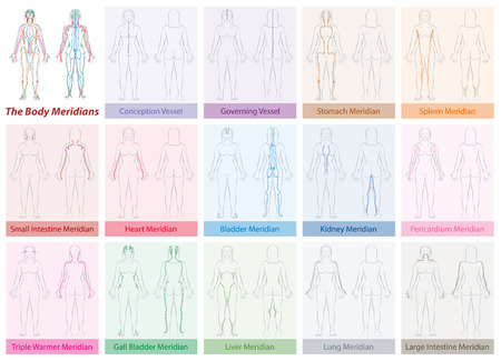 Body meridian chart of a womans body - with names and different colors - Traditional Chinese Medicine. Isolated vector illustration on white background. Vettoriali