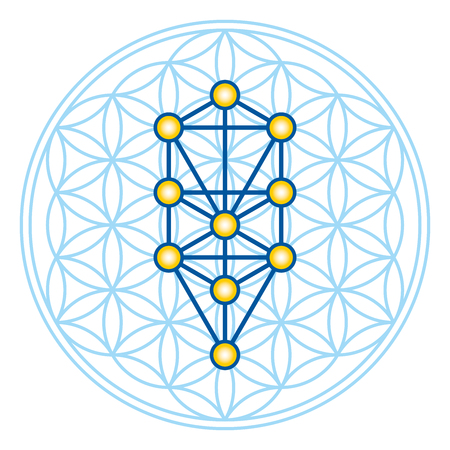 Flower of Life in Tree of Life. Sephirots of Kabbalah in ancient symmetrical symbol, composed of multiple overlapping circles, forming a flower like pattern. Sacred geometry. Illustration. Vector. Banco de Imagens - 73766244