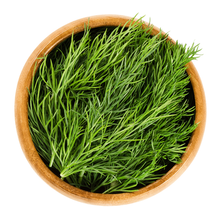 Fresh dill fronds in wooden bowl, also called dill weed. Green leaves of the annual Anethum graveolens, used as herb and spice. Isolated macro food photo close up from above on white background. Stockfoto